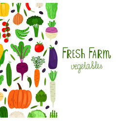 hand drawn cartoon vegetables banner vector image