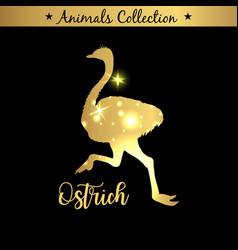 isolated vintage gold emblem for farm with ostrich vector image