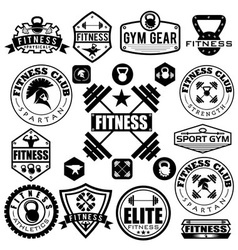 Set of various sports and fitness icons and design vector image