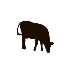 Silhouettes of cows different poses black vector