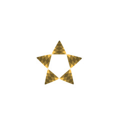 star logo designs inspiration isolated on white vector image