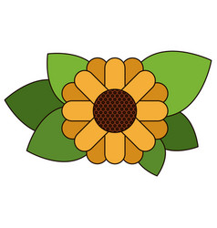 White background with abstract sunflower with vector