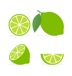 collection fresh whole half and slice lime with vector image