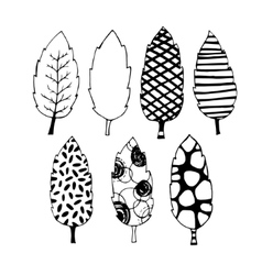 Leaves hand drawn set vector