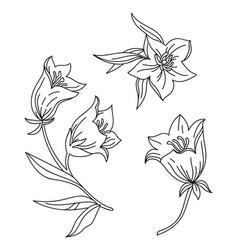 line art set bell flower vector image