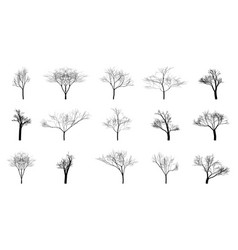 Set of black bare trees on an empty background vector