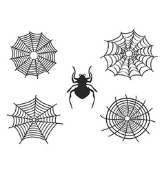 spider net vector image vector image