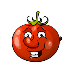 tomato icon in flat style vector image