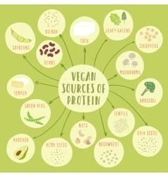 Vegan sources protein vector