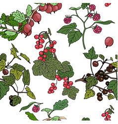 seamles pattern different berries vector image vector image