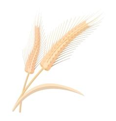 Two stalks of ripe barley cartoon icon vector image vector image