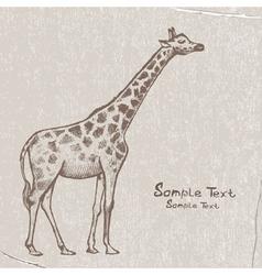 art giraffe4 vector image vector image