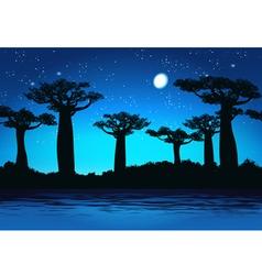 Baobabs At night vector image vector image