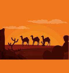 camels walking on desert silhouette vector image