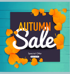 autumn sale banner with autumn leaf poster vector image