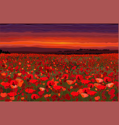 bright poppy field with sunset sky vector image