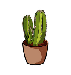 cactus in a clay pot element home decor the vector image