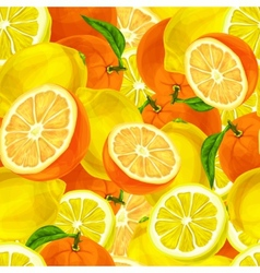 Citrus fruits seamless background vector image