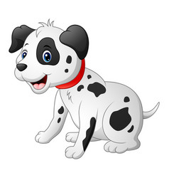 cute dalmatic dog vector image