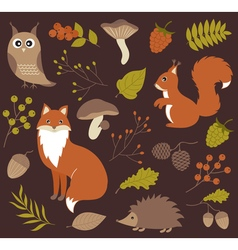 Woodland Animals vector