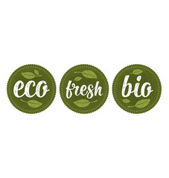 bio eco fresh calligraphic handwriting lettering vector image