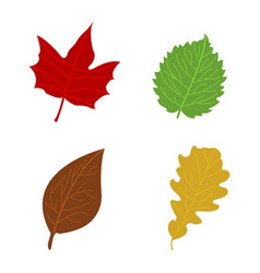 Cartoon flat autumn leaves vector