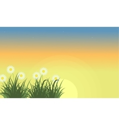 Landscape of flower at spring with orange sky vector