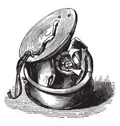 Skippet - open box with a seal inside or circular vector