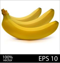 Three bananas in batch vector