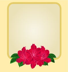 Golden frame with red rhododendron greeting card vector image vector image