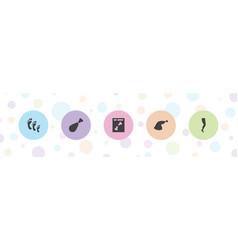 5 leg icons vector