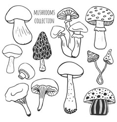 Hand drawn mushrooms collection doodle set with vector