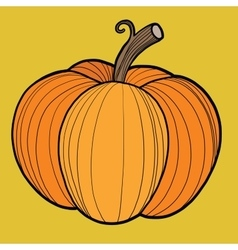 Ripe pumpkin autumn harvest vector