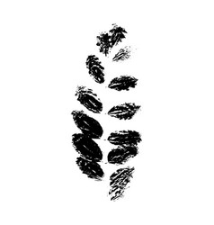 Rowan or sorb tree leave silhouette plant and vector
