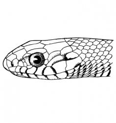 Snake face vector