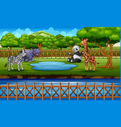 wild animals in zoo park open air cage on nat vector image