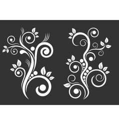 Two floral ornaments vector image
