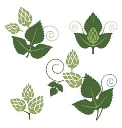 hop design elements vector image