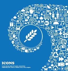Wheat Ears Icon sign Nice set of beautiful icons vector image