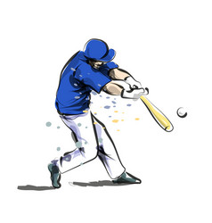 color line sketch baseball vector image