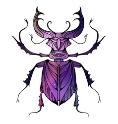 Hand drawn vintage stag beetle with a boho vector
