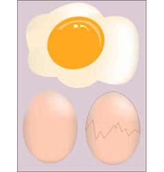 Isolated broken egg on white background vector