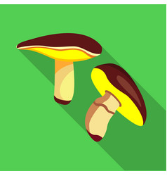 Suilus mushrooms icon flat style vector