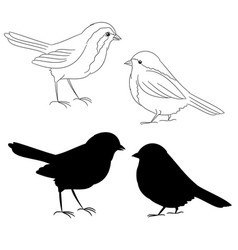 The outline and silhouette birds fifth set vector