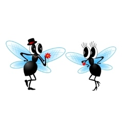 Two funny fly vector image