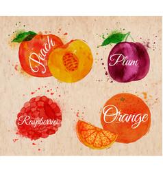Fruit watercolor peach raspberry plum orange in vector