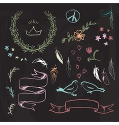 hand drawn spring graphic set on blackboard vector image