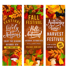 Autumn season harvest festival invitation banner vector