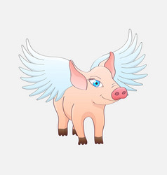 funny pig with wings isolated on a gray background vector image