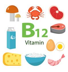 Infographic set vitamin b12 healthy lifestyle vector